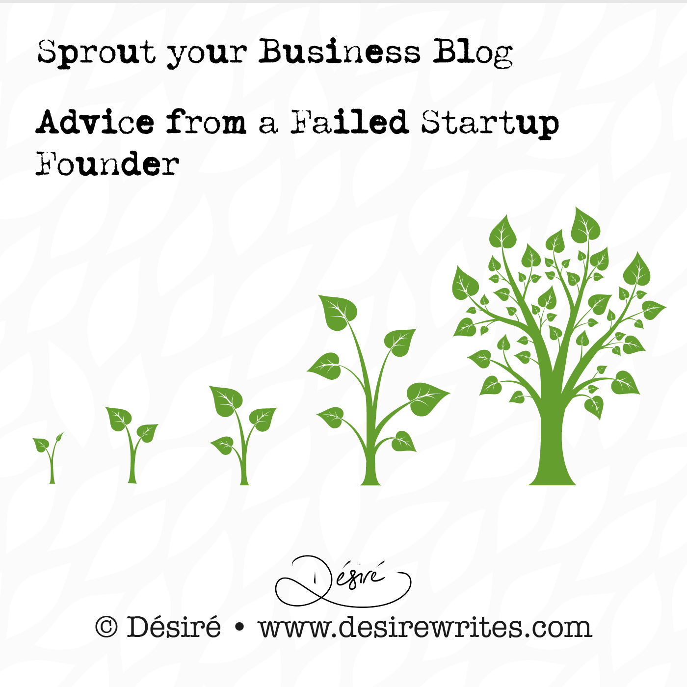 Advice from a Failed Startup Founder